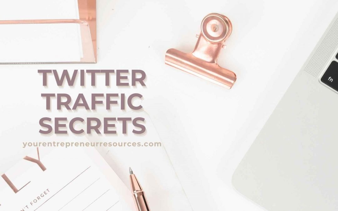 Twitter Traffic Secrets: Ultimate Guide to master how to use Twitter, Tips and Strategies